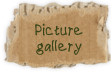 picture gallery